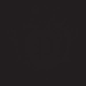 logo-marchio-pataviumart-lampadari-lusso-artigianali-artistici-italiani-design-classici-eleganti-personalizzati-decorativi-illuminazione-vetro-murano